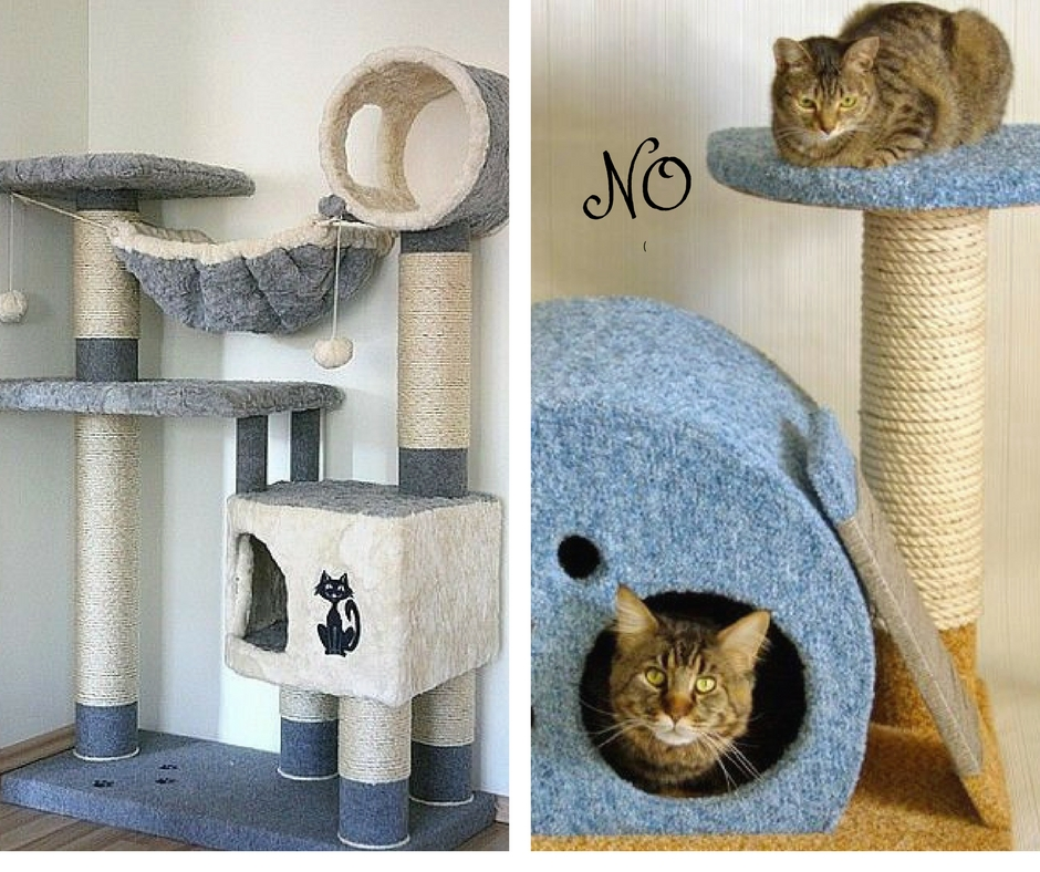 Картинки домов для кошек по шагово