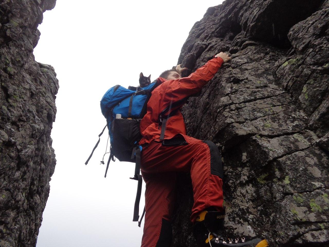 фото мужчины альпиниста википедии можно прочитать